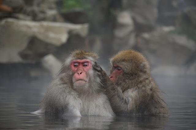 風呂にはいれるのがうれしい