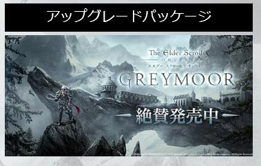 エルダー・スクロールズ・オンライン:DMMの日本語版を購入しました